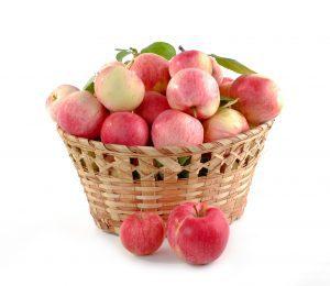 декларация соответствия на яблоки