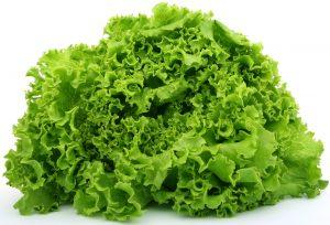 Декларация соответствия на листья салата